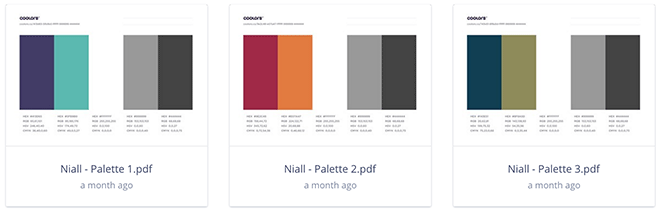 niall-connolly-palettes