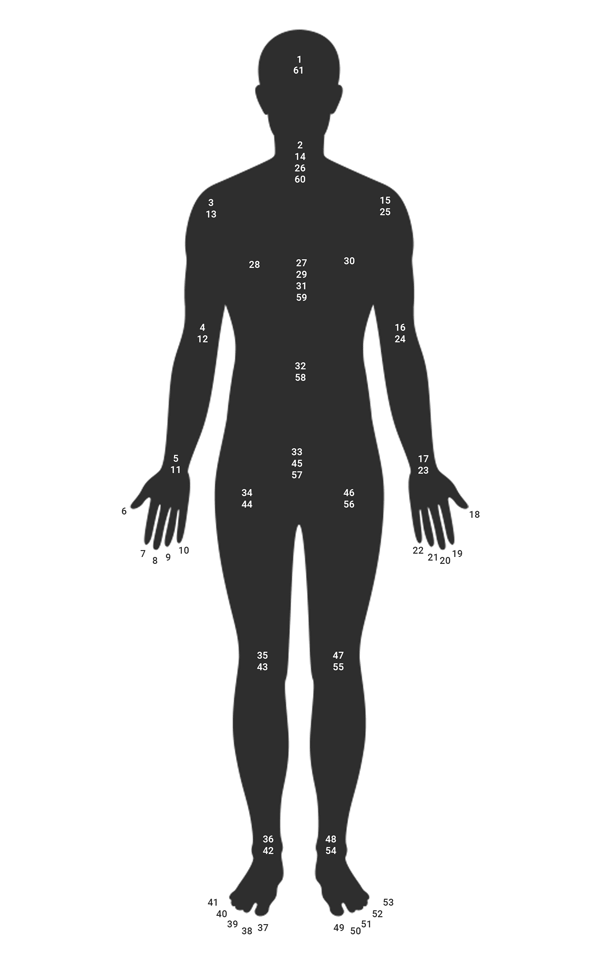 Silhouette of a human body showing the points one must visualize to go through the 61 points meditation.